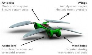 dragonfly-microuav-2
