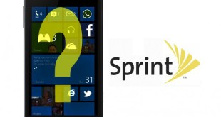 sprint-winphone