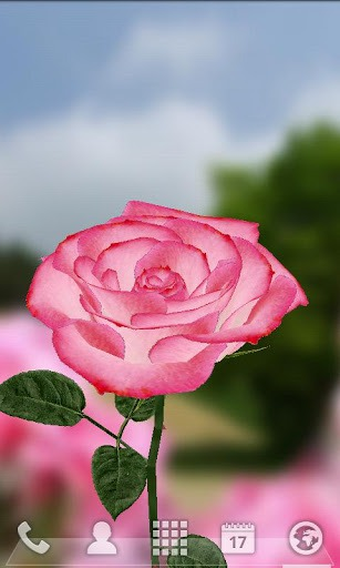 3d Flower Touch Live Wallpaper Download Free Android Wallpaper 3d Rose 2233
