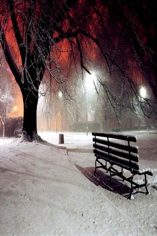 Central Park Iphone 6 Wallpaper Download Winter Night Nature Iphone Wallpaper Mobile
