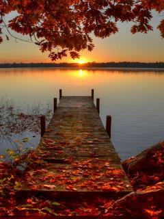 Free Fall Phone Wallpapers Download Autumn Sunrise Dock Mobile Wallpaper Mobile Toones