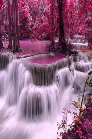 Free Fall Wallpaper For Iphone Download Pink Waterfalls Nature Trees Mobile Wallpaper