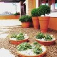 Jardim com vasos, são decorações alegres e modernas