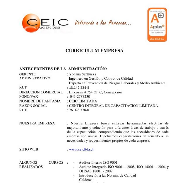 curriculum empresarial  Modelo Curriculum