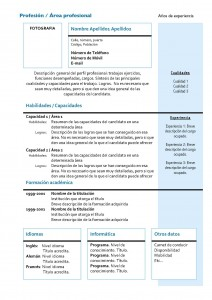 Curriculum Vitae Ejemplo Gipe Cmo Hacer Un Curriculum Vitae Cv Funcional Modelos Y Plantillas Modelo Curriculum