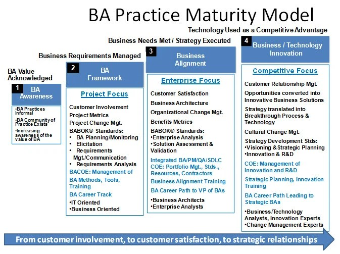 The 21st Century BA Building a Mature, Innovation-Driven Business - what is business analysis