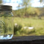 Why is Moonshine Illegal, Anyway?
