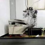 Video: Robots Now Run Faster Than Humans