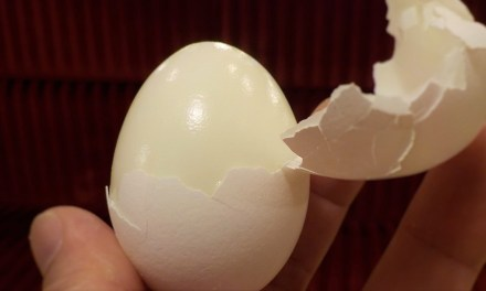 How To Hard Boil an Egg (You've Been Doing it Wrong)
