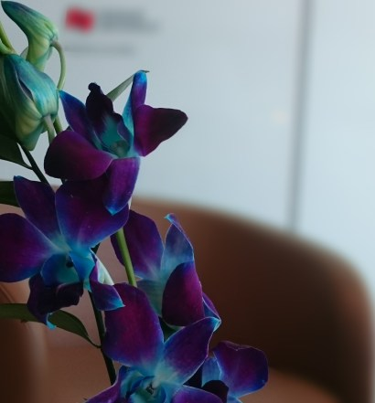 Flowers in the quiet room of National Bank World Mastercard Lounge at YUL. Priority Pass Lounges