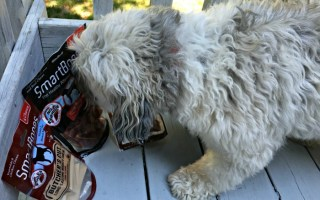 Do Your Dog a Favor and Offer SmartBones® as a Treat {Giveaway}