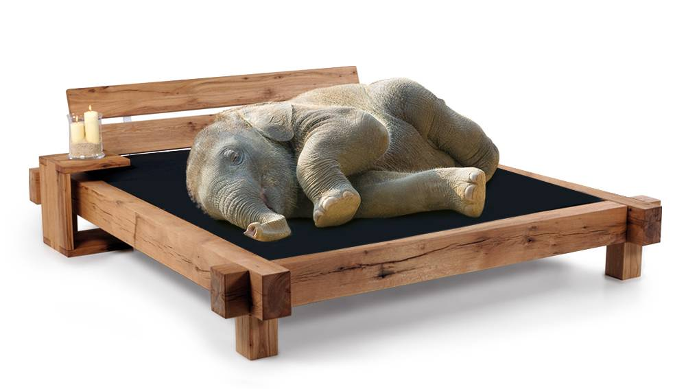 1 40 Bett 2 Lattenroste  Elefanten Doppelbett Massivholzbett Kiefer Vollholz 140 X