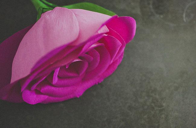 Diy Une Rose Geante En Papier