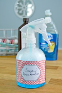 The Best Homemade Stain Remover Recipe - Mom 4 Real
