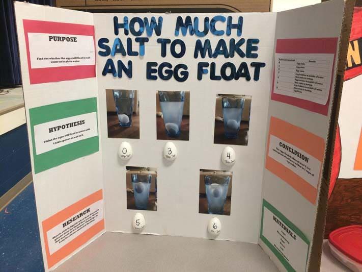 75+ Science Fair Project Ideas -
