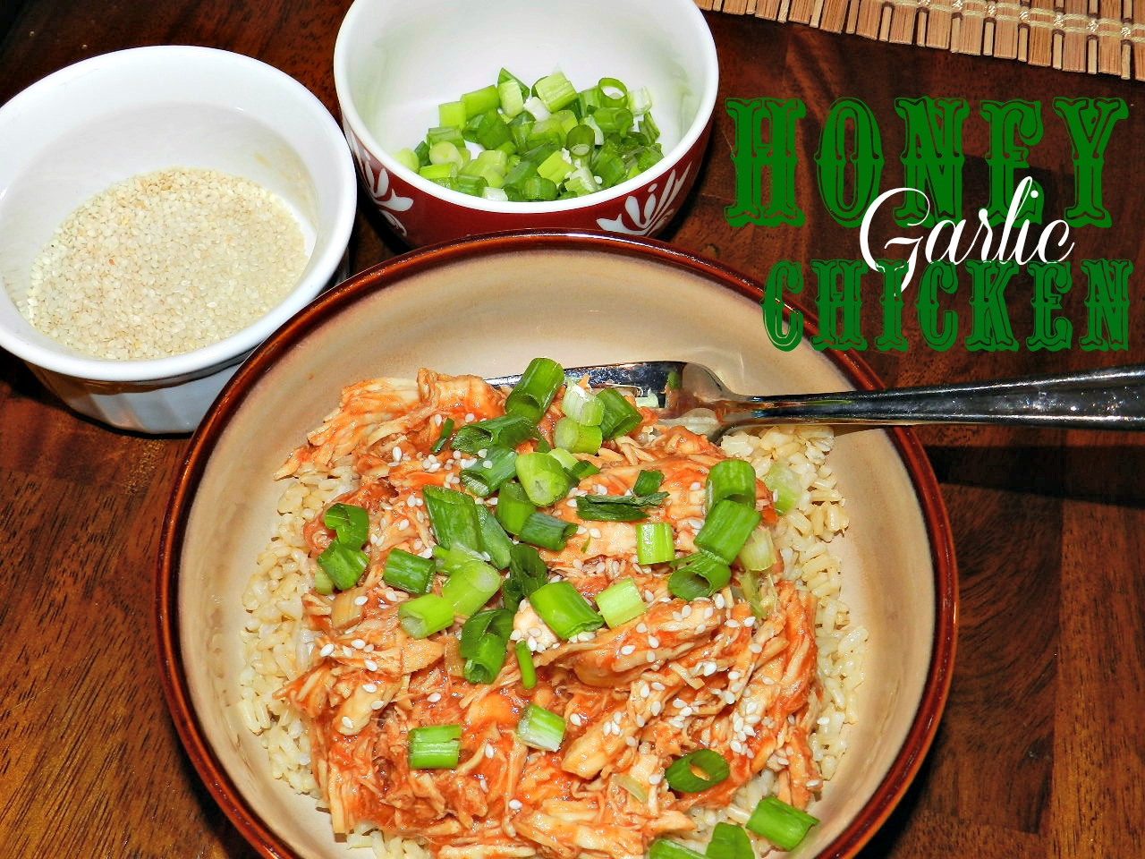 Honey Garlic Chicken (8)