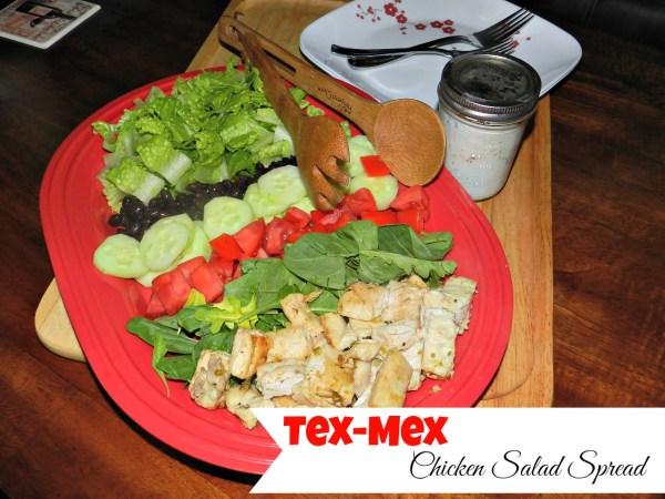 TexMex Chicken Salad Spread4