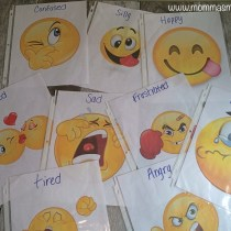 Feelings Flashcards FB