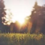 Embracing the Stillness