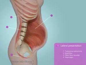 Pelvic Pain During Pregnancy Exercises For Pubic Pain