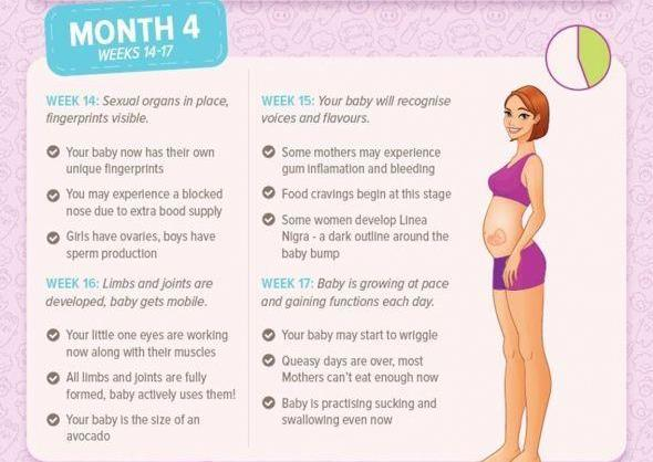 Moms Who Think - Pregnancy