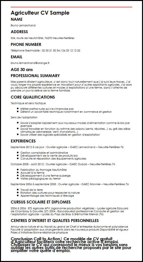 cv qualification competences