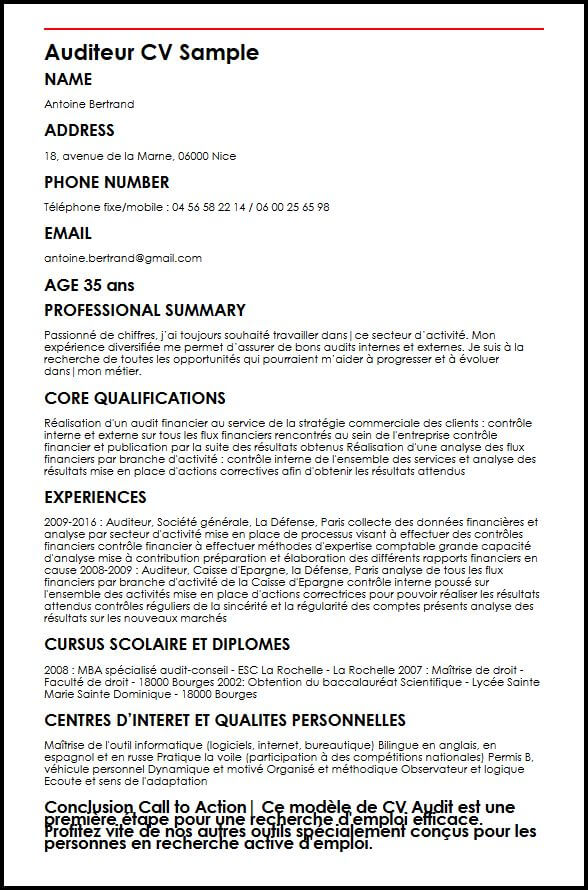 cv auditeur informatique