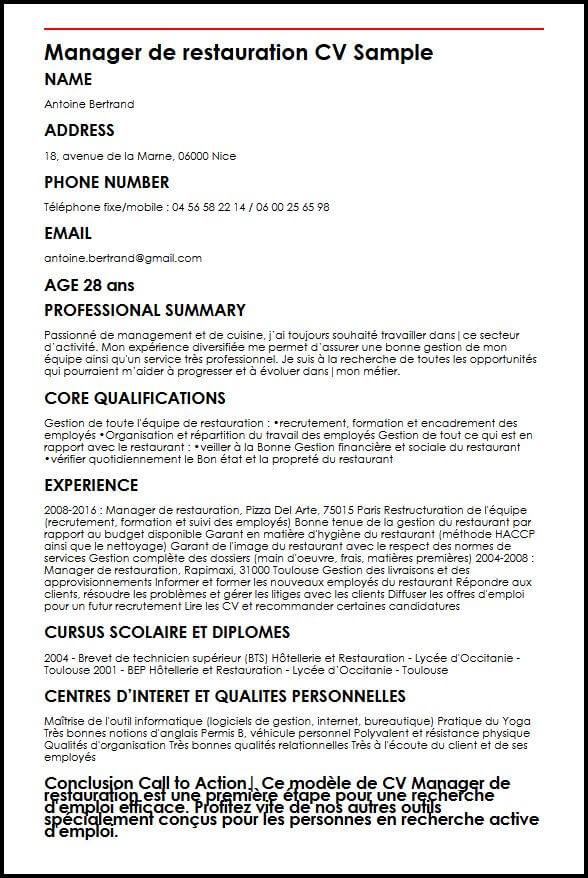 cv manager informatique