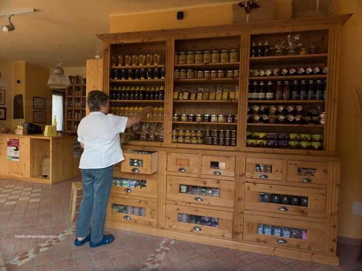 Lavarone 0498 Fraz Tobia Museo del miele