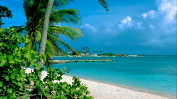 beach_view