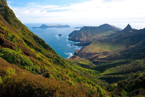 Cile / Sull' Isola di Robinson Crusoe