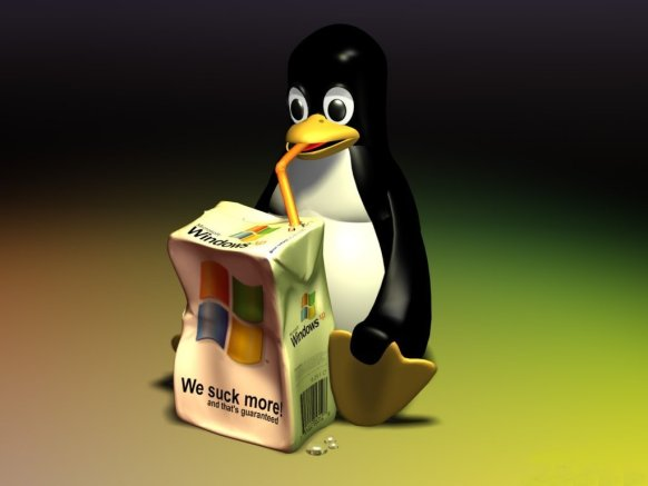 Penguin-Windows XP- GNU/Linux