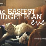 The Easiest Budget Plan Ever