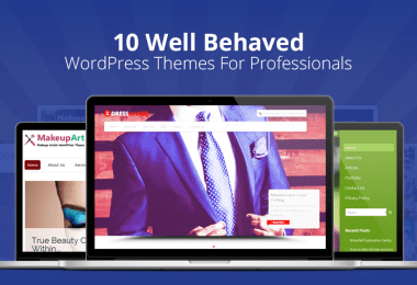 WordPress Themes For Professionals