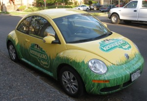 moneymagpie_make-100-a-month-with-ads-on-your-car_car-ad