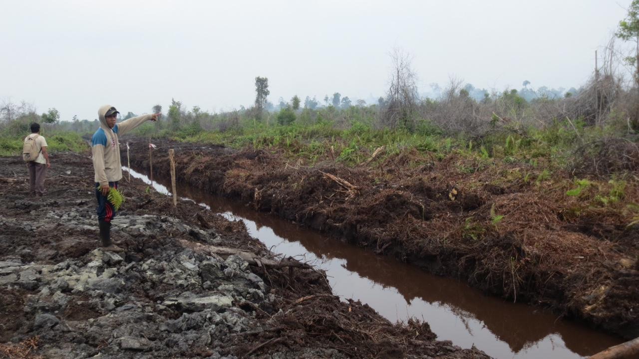 Sistem Informasi Pemerintahan Di Kecamatan Kecamatan Wikipedia Bahasa Indonesia Ensiklopedia Bebas Waduh… Kawasan Moratorium Hutan Di Katingan Kalteng Dibuka Untuk