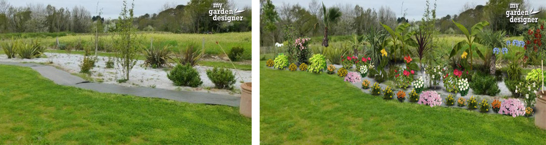 Am nager une plate bande exotique en climat oc anique for Logiciel paysagiste jardin