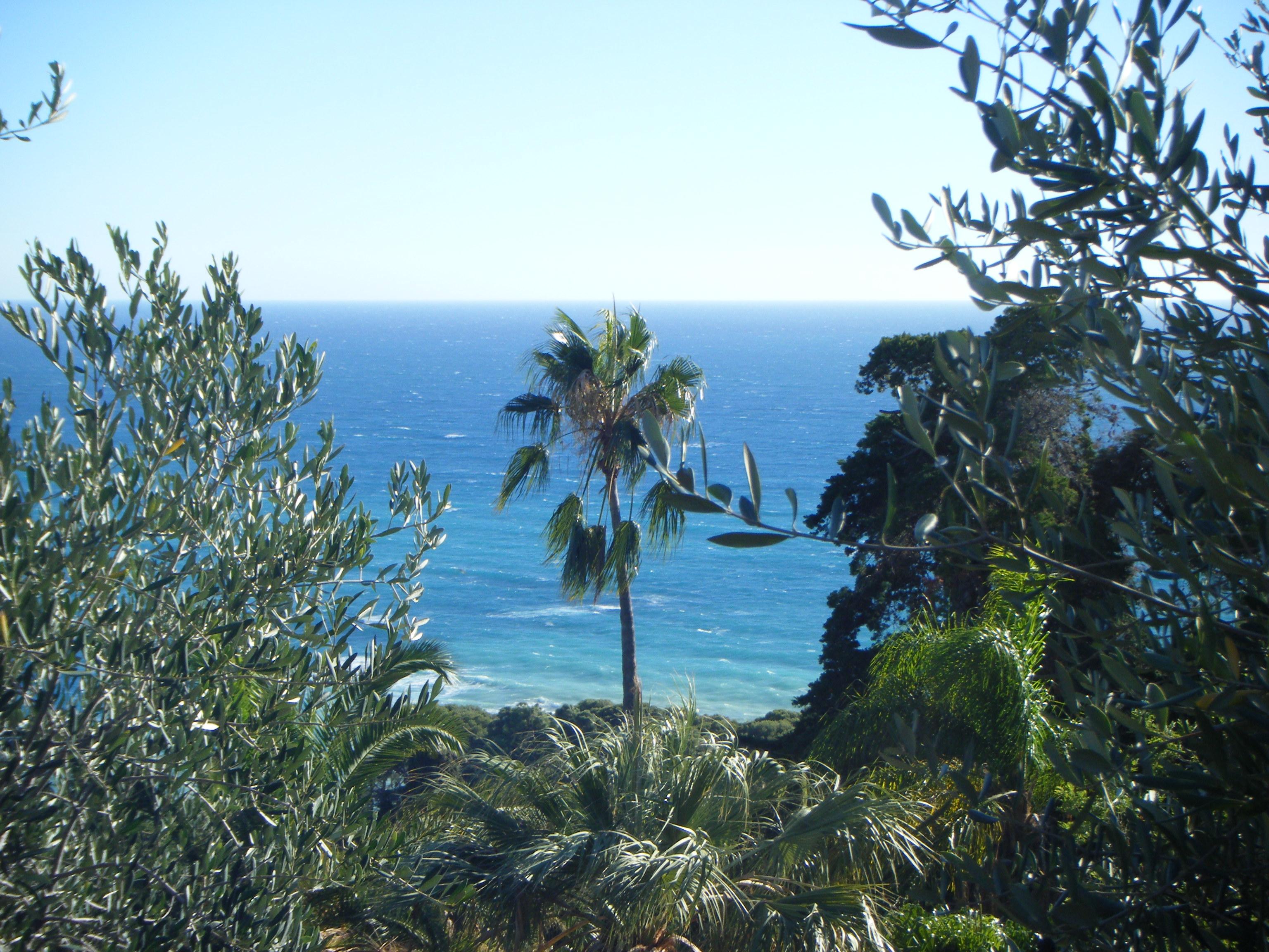 Am nager un jardin de bord de mer r sistant aux embruns monjardin - Jardin de bord de mer ...