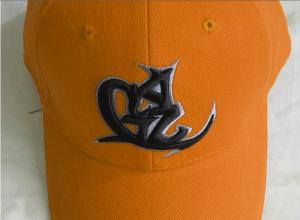 3D Puff Baseball Hat