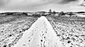 Winterlandschaft-by-monkey-of-hope