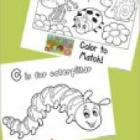 Free Bug Theme Printables