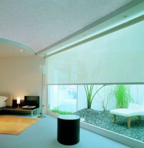 cortinas-screen-4