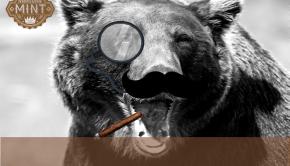beartycoonBlank3