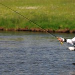 Where to fish in Montana