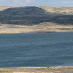 FWP Collects 575,000 Chinook Salmon Eggs From Fort Peck Reservoir