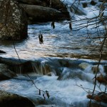 Stream Fishing Opening Day And More In The Helena Area Outdoor Report