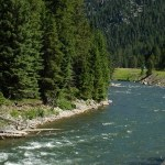Some Great Dry Fly Fishing Opportunities in the Bozeman Area Fly Fishing Report