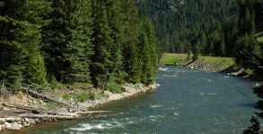1296_2052_Montana_Gallatin_River_md