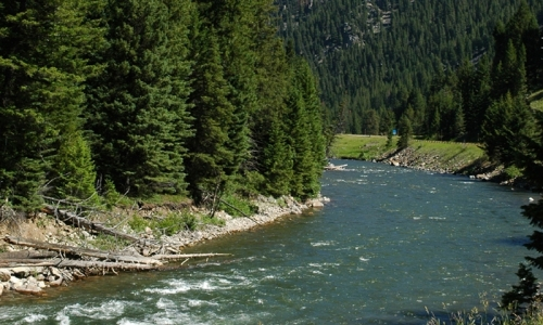 Gallatin Fishing Well After Flows Dropped: Butte and Bozeman Outdoor Report