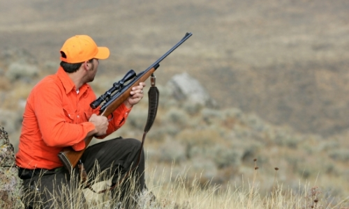 Hunter Numbers Are Up: Good News for Conservation